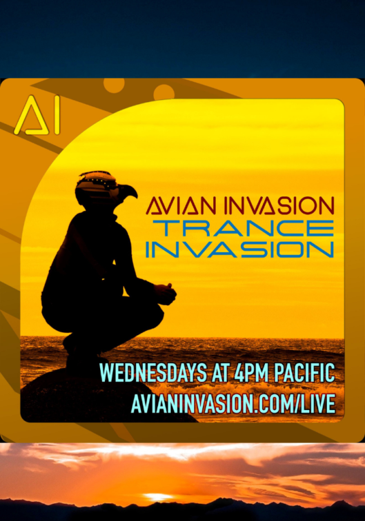 Avian Invasion - Trance Invasion on The DJ Sessions